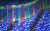 Séquençage nouvelle génération (NGS)
