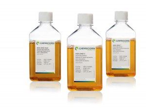 Améliorez la transfection et la production de vos cellules HEK